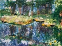 roxsane-tiernan-wetlands