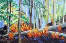 Yukon Fireweed acrylic on canvas 22 x 32 framed $995